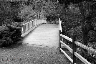 Footbridge - B&W conversion
