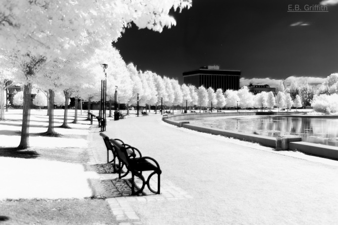 Capitol Lake - Infrared w/ EOS 6D